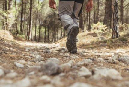 leg-view-of-hiker-walking-in-forest_23-2147665086