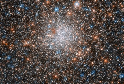 This glittering ball of stars is the globular cluster NGC 1898, which lies towards the centre of the Large Magellanic Cloud — one of our closest cosmic neighbours. The Large Magellanic Cloud is a dwarf galaxy that hosts an extremely rich population of star clusters, making it an ideal laboratory for investigating star formation. Discovered in November 1834 by British astronomer John Herschel, NGC 1898 has been scrutinised numerous times by the NASA/ESA Hubble Space Telescope. Today we know that globular clusters belong to the oldest known objects in the Universe and that they are relics of the first epochs of galaxy formation. While we already have a pretty good picture on the globular clusters of the Milky Way — still with many unanswered questions — our studies on globular clusters in nearby dwarf galaxies just started. The observations of NGC 1898 will help to determine if their properties are similar to the ones found in the Milky Way, or if they have different features, due to being in a different cosmic environment. This image was taken by Hubble's Advanced Camera for Surveys (ACS) and Wide Field Camera 3 (WFC3). The WFC3 observes light ranging from near-infrared to near-ultraviolet wavelengths, while the ACS explores the near-infrared to the ultraviolet.